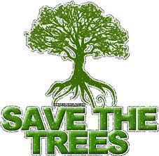 hari pohon sedunia