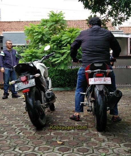 Rider 180cm